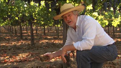 Portrait of a Winemaker John Williams of Frog's Leap