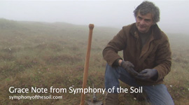 Symphony_of_the_Soil_GN_IgnacioChapela