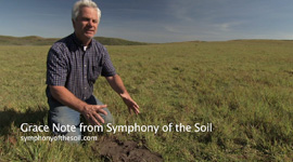 Symphony_of_the_Soil_GN_KevinLunny