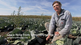 Symphony_of_the_Soil_GN_KlaasMartens