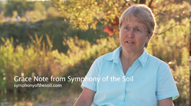 Symphony_of_the_Soil_GN_LaurieDrinkwater