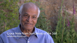 Symphony_of_the_Soil_GN_SatishKumar