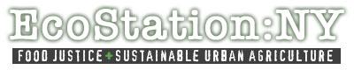 ESNY-logo-2012