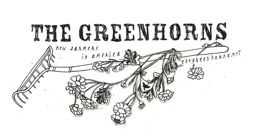 greenhorns-rake-drawing-pic